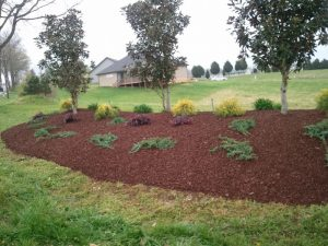 Mulch used for landscaping