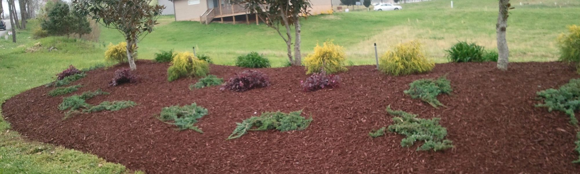 landscaping knoxville